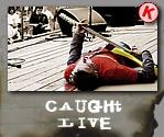 Koopa caught live