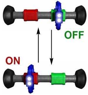 Rotaxaanmoleculen