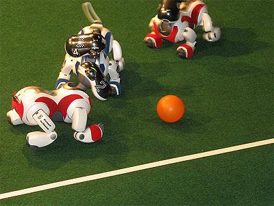 Viervoetige robots spelen een potje voetbal