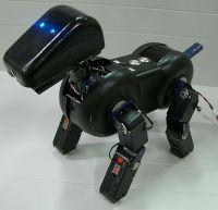 IXS BJ-robothond