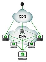 CDN en DNA
