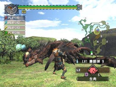 Monster Hunter 2 - screenshot