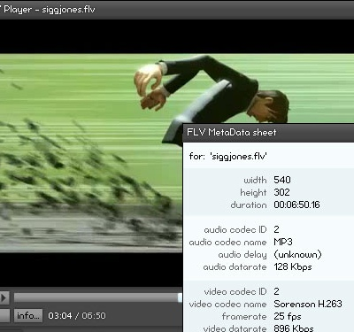 FLV Player 2.0 (crop)