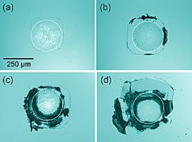 Vermoeiing in silicium