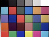 Samsung S85 Kleurkaartfoto (thumb)
