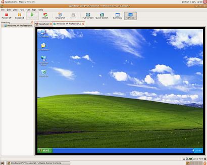 Vmware Server draait Windows op een Linux-server