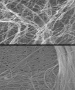 Nanobuizen (boven) en asbest (onder)