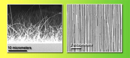 Nanodraden als lichtsensor