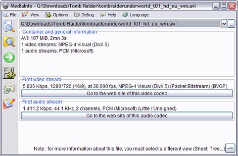 MediaInfo 0.7.7.5 screenshot (481 pix)