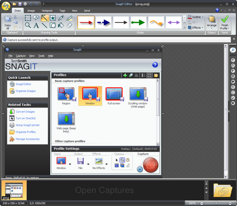 SnagIt 9.0 screenshot (481 pix)
