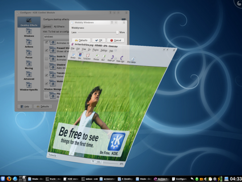 Desktop Effects in the KDE 4.1 workspace (481 pix)