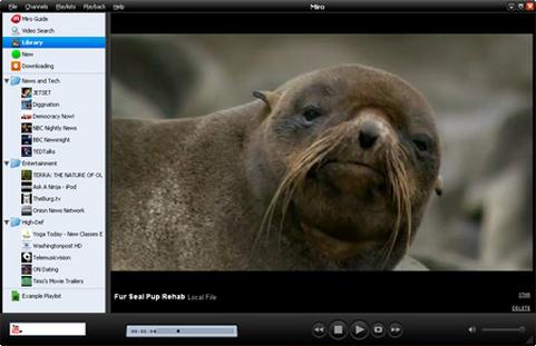Miro screenshot (481 pix)