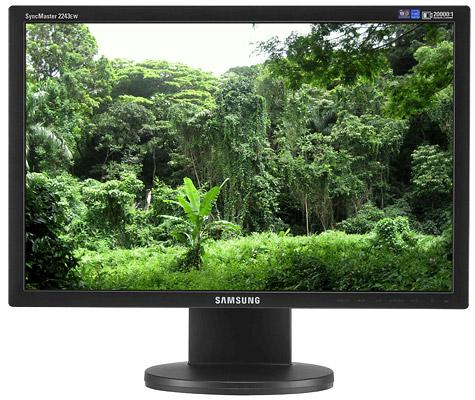 Samsung Syncmaster 2243EW