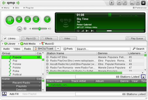 Quintessential Media Player 5.0 screenshot (481 pix)