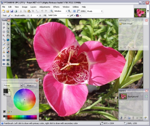 Paint.NET 3.5 build 3522 alpha screenshot (481 pix)