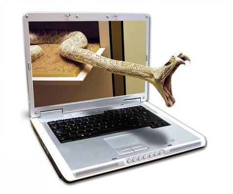 3d laptop