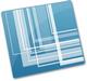 Snagit 10 logo (75 pix)