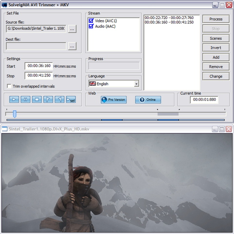 SolveigMM AVI Trimmer 2.0 screenshot (481 pix)