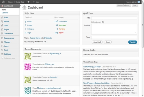 WordPress 3.3 Dashboard (481 pix)