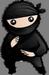 System Ninja logo (75 pix)