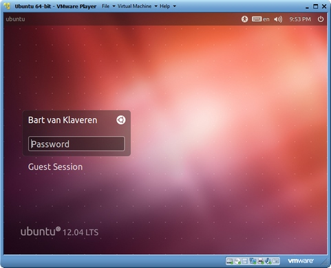 VMware Player 4.0 screenshot (481 pix)