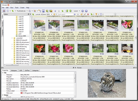 XnViewMP 0.50 screenshot (481 pix)