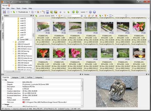 XnViewMP 0.50 screenshot (481 pix)