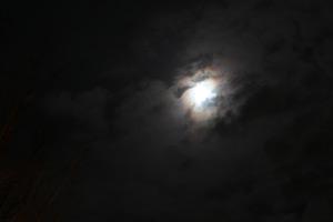 Canon EOS 6D fotosample2 jpeg