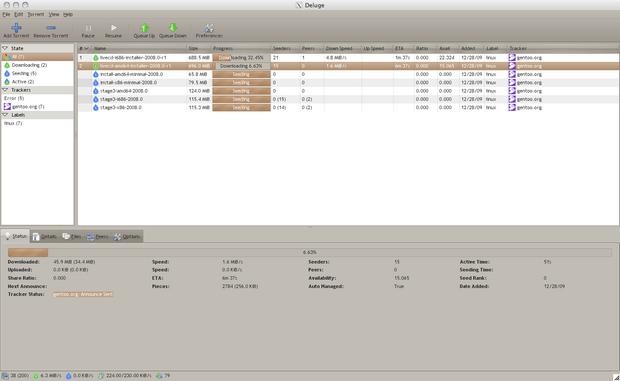 Deluge screenshot (620 pix)