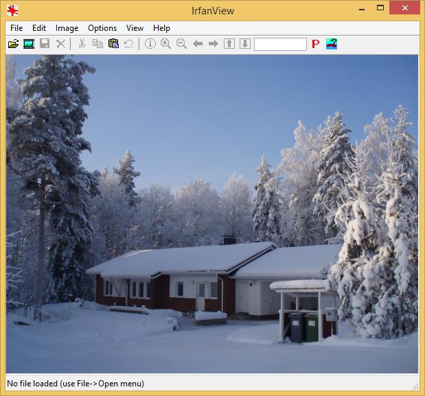 IrfanView screenshot (620 pix)