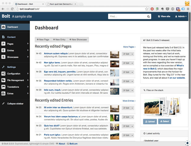 Bolt dashboard screenshot (620 pix)
