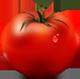 FreshTomato logo (79 pix)