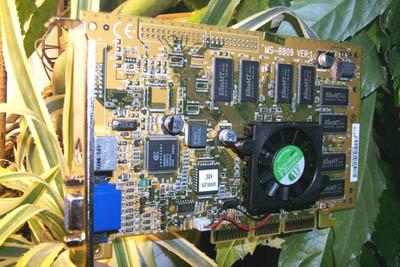 De MSI GeForce in de plantenbak :-)