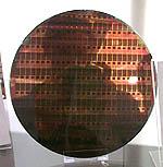 AMD Dresden wafer (klein)