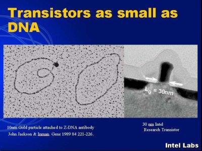 0.03 micron - zo klein als DNA