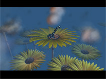 Moppi Gerbera screenshot