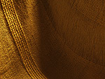 Minolta Dimage7 sample image (265)