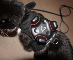 Kat met tracker voor HTC Vive