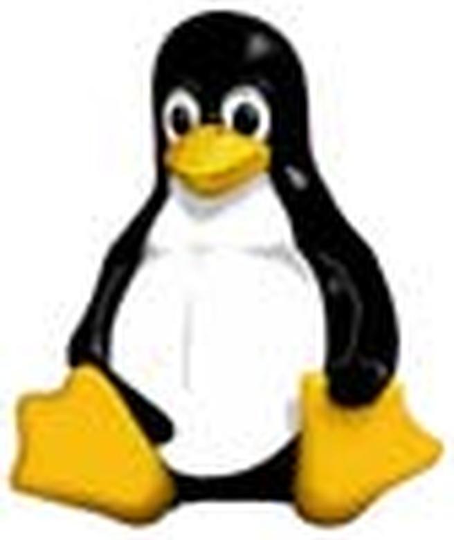 Tux (linux logo)