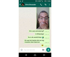 Animated gifs in WhatsApp