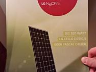 LG NeON 2 solar