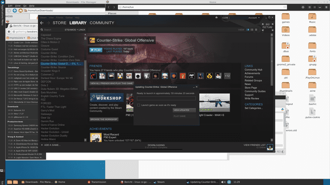 Counter-Strike: Global Offensive onder Linux