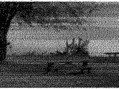 zwart-wit MQ-PC 300dpi resultaat