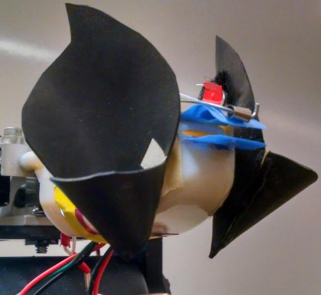 vleermuis hoefijzerneus robot sonar echolocatie