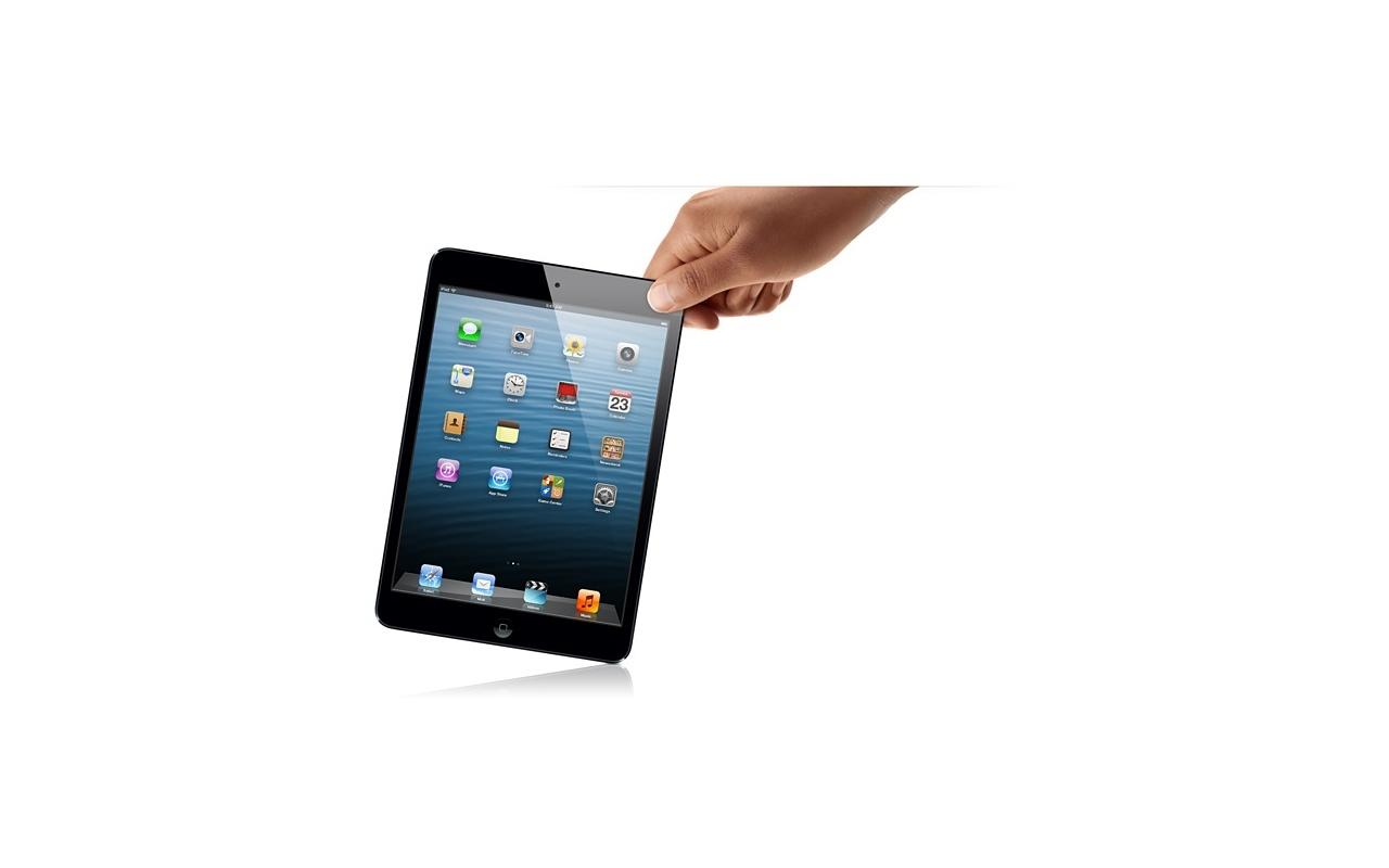 Apple IPad Mini Wi Fi 16GB Zwart