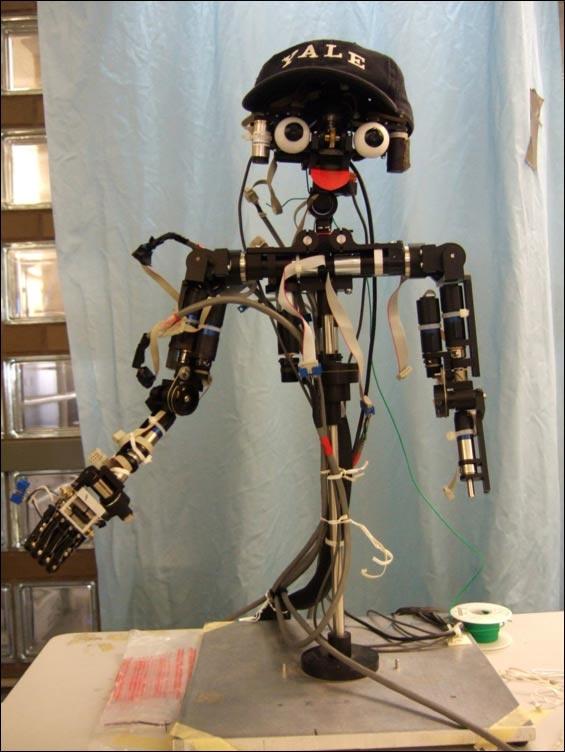 Zelfbewuste humanoid robot Nico