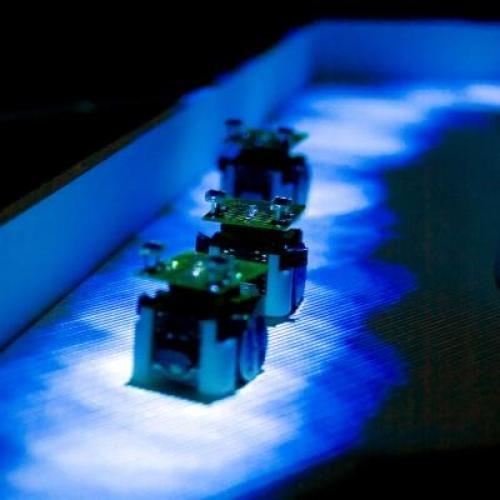 Robotkolonie