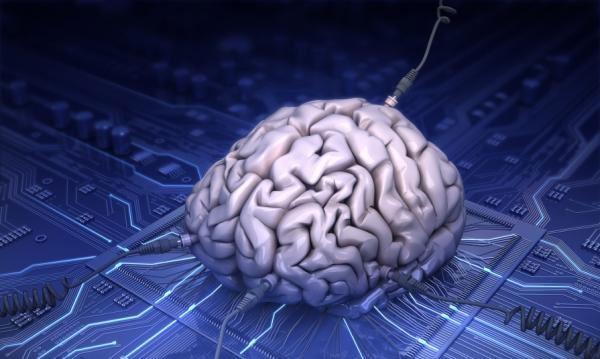 Brein op silicium (afbeelding van iStockphoto/Andrey Volodin via Sciencedaily.com)