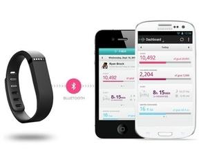 Fitbit Flex Zwart