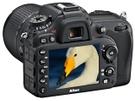 Nikon D7100 + AF-S DX 18-140mm f3.5-5.6G VR G ED Zwart